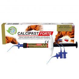 Calciplast Forte, pasta hidroxid de calciu cu iodoform si clorfenol , 2.1 g